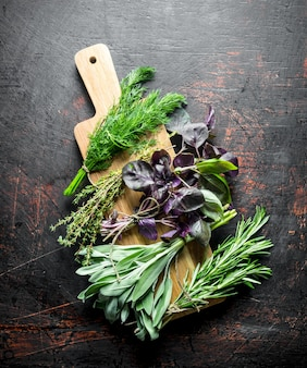 Vari tipi di erbe utili su un tagliere di legno. su fondo rustico scuro