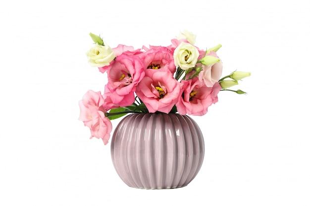 Vaso con i fiori di eustoma isolati su bianco