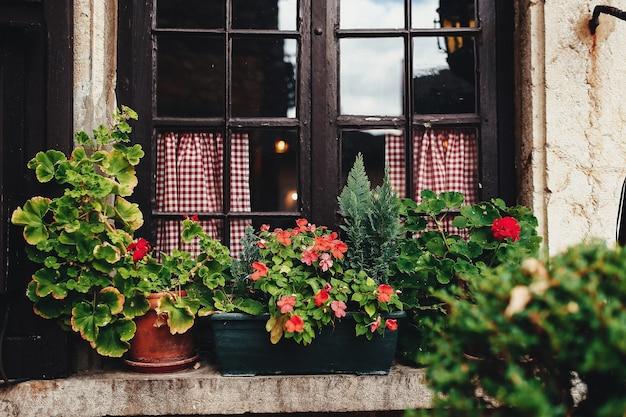 Vasi sul davanzale di una finestra a perouges, francia. foto di alta qualità