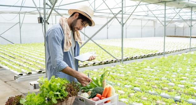 Proprietario dell'azienda agricola di verdure visualizzazione della produzione e controllo di qualità dalla produzione e dalla crescita delle verdure biologiche