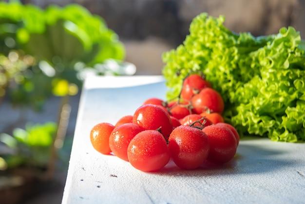 Verdure e spezie su un tavolo con luce naturale e messa a fuoco selezionata