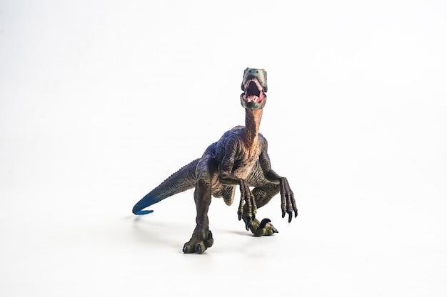 Velociraptor su sfondo bianco
