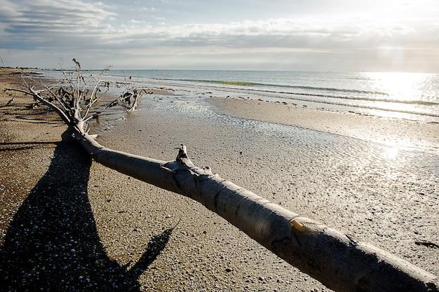 Lido di venezia spiaggia di dune di sabbia