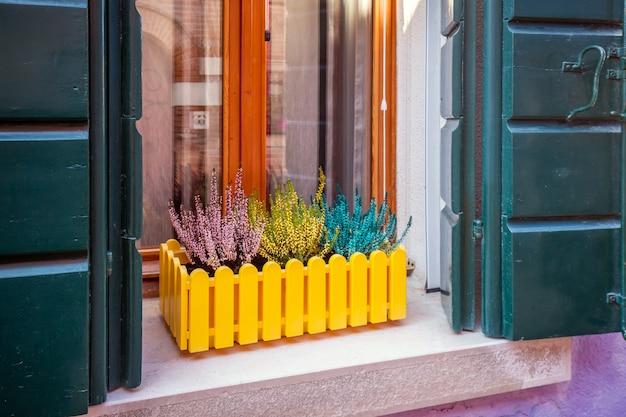 Porte e finestre di venezia