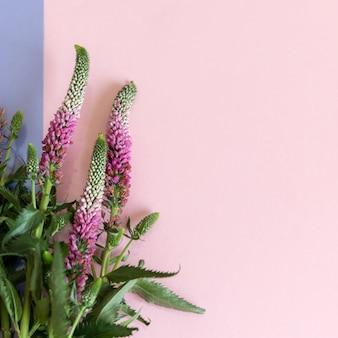 Il bouquet di fiori di veronica ha sfocato lo sfondo con il fuoco selettivo, sfondo floreale rosa, fiori sul modello di carta