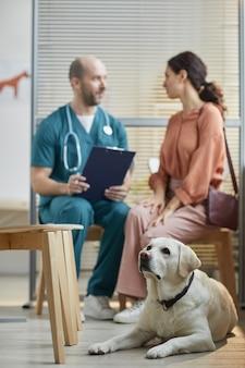 Ritratto verticale a figura intera di un cane labrador bianco in attesa presso la clinica veterinaria con una giovane donna che parla con un veterinario in sottofondo