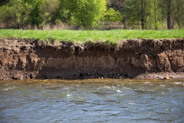 Un argine verticale con ripida parete di terra adatta alla nidificazione del martin pescatore