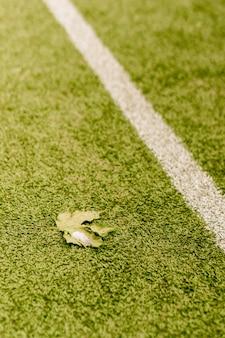 Ripresa verticale di una foglia caduta su un prato di calcio con segni bianchi