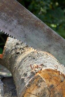 Colpo verticale vecchia sega arrugginita che taglia ceppo dell'albero. primo piano di concetto della lavorazione del legno.