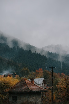 Ripresa verticale di case rurali e alberi colorati in una foresta autunnale