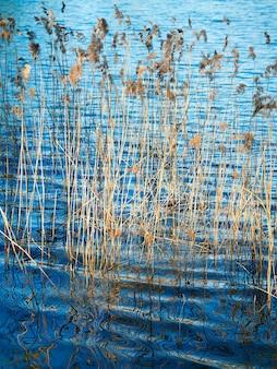 Il torrente d'acqua verticale picchia lo sfondo dell'oggetto
