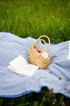 Picnic molto bello nella natura nel parco. borsa di paglia, libro, plaid blu. ricreazione all'aperto. avvicinamento.