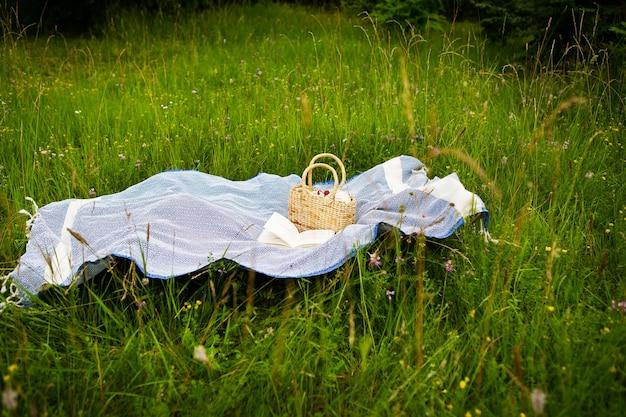 Picnic molto bello nella natura nel parco. borsa di paglia, libro, plaid blu. ricreazione all'aperto.