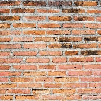 Fondo molto vecchio di struttura del muro di mattoni nel rapporto quadrato