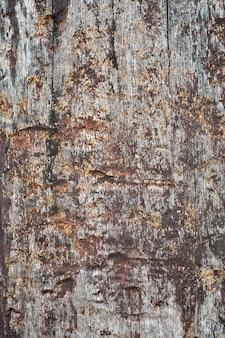 Fondo di legno molto vecchio e sporco di struttura