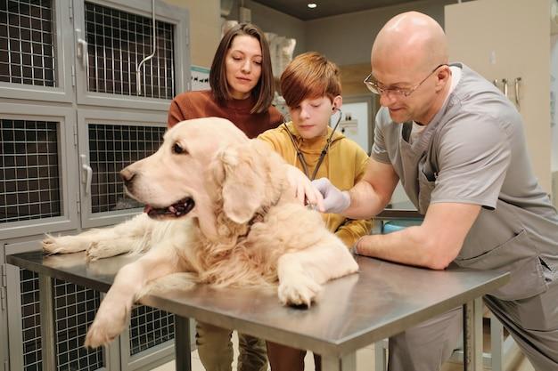Il veterinario che esamina l'animale domestico con l'aiuto del ragazzino e di sua madre in clinica