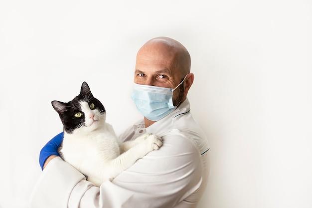 Medico veterinario abbraccia un gatto tra le braccia. medicina veterinaria