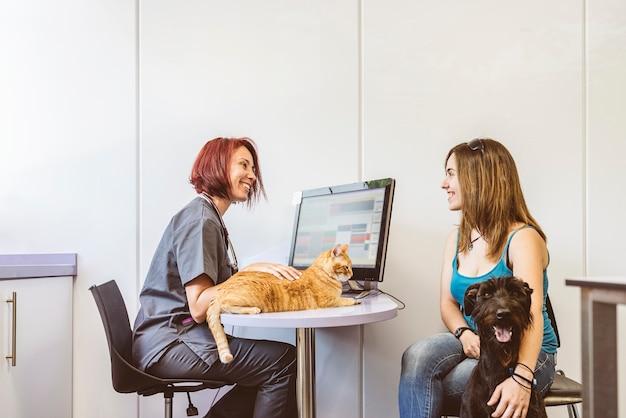 Il medico veterinario sta facendo un controllo di un bel gatto carino. concetto veterinario.