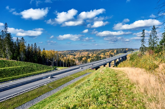 Viadotto e cavalcavia con auto nella foresta autunnale