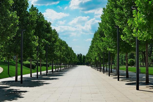 Vista del vicolo degli alberi
