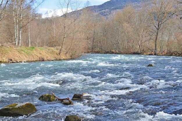 Vista sul bellissimo fiume alpino blu che scorre tra la sponda della foresta e lo sfondo di montagne innevate