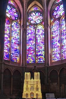 Vista sulla cattedrale notre dame con albero a sinistra
