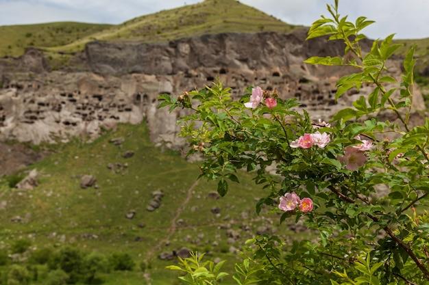 Vista del monastero rupestre di vardzia georgia vardzia è un sito del monastero rupestre scavato da