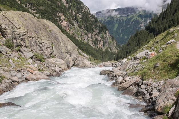 Visualizza le scene del fiume del primo piano in montagne, parco nazionale svizzera, europa. paesaggio estivo, tempo soleggiato e giornata di sole