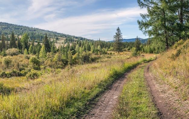 Vista su strada di campagna, prato e bosco