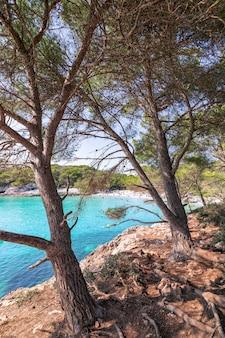 Vista della famosa spiaggia di cala turqueta. minorca, isole baleari, spagna
