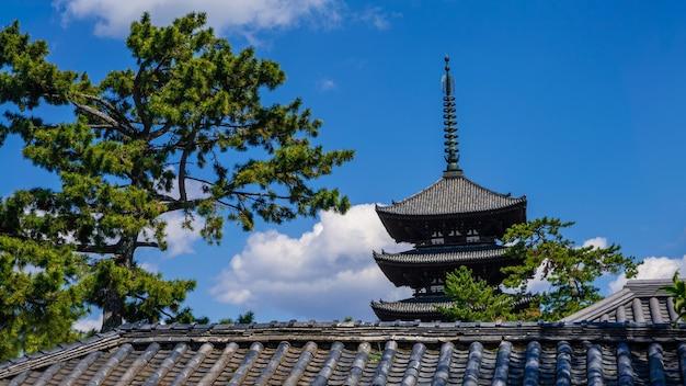 Vista della pagoda a cinque piani del tempio kofukuji a nara. paesaggio urbano del giappone della seconda pagoda di legno più alta. famosi monumenti storici dell'antica nara designati dall'unesco