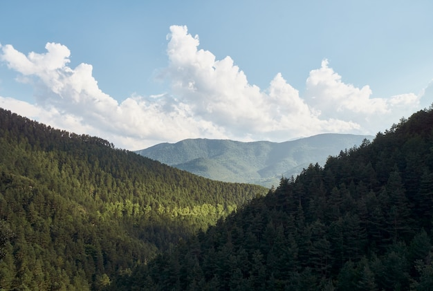 Vista della foresta e delle montagne con la luce del sole che illumina gli alberi e il cielo