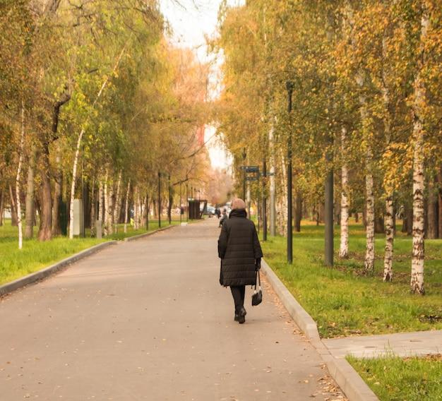 Una vista dal retro di una donna adulta vestita di nero e che cammina lungo un vicolo di fogliame giallo dorato di alberi autunnali autunnali sulla strada a mosca.