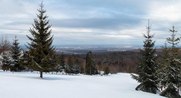 Vista dalle montagne delle montagne carpatiche sulla foresta coperta in inverno