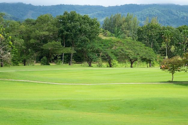Vista del campo da golf con putting green a hokkaido, giappone. campo da golf con un ricco tappeto erboso verde