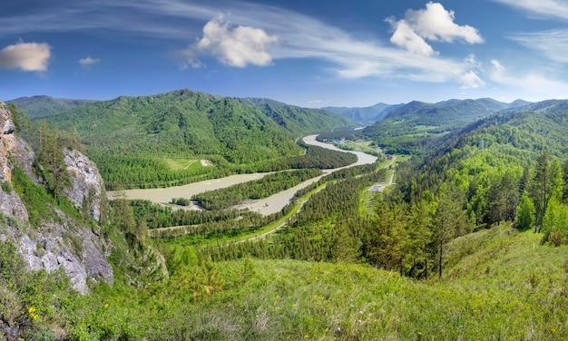 Vista della verde vallata del fiume katun nei monti altai in una giornata estiva