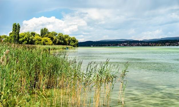 Vista del lago di costanza dall'isola di reichenau in germania