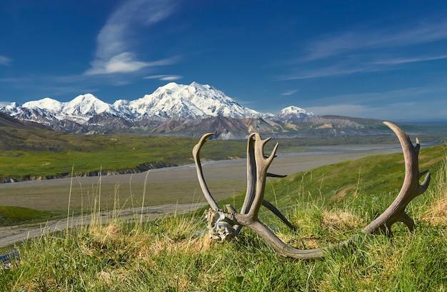 Visualizza montagna con corna sul terreno