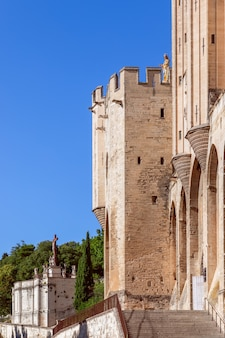Veduta del palazzo dei papi della città di avignone e della cattedrale di nostra signora dei doms.