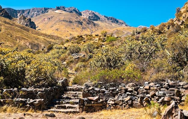 Vista delle rovine preincaiche a chivay al canyon del colca in perù