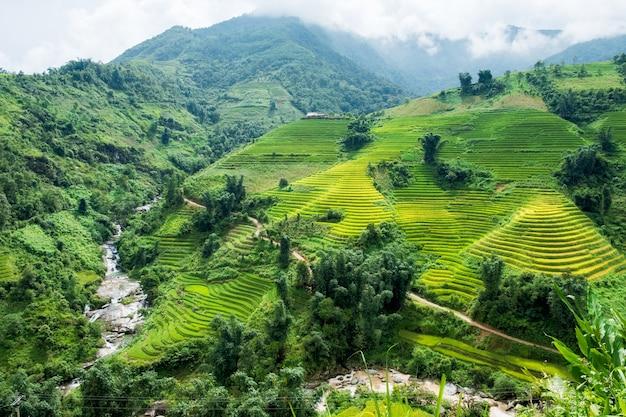 Vista del terrazzo del campo di riso con il fiume in valle a sapa, vietnam