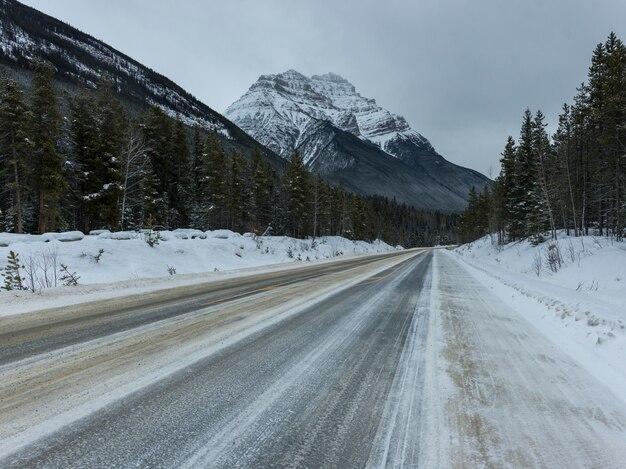 Vista della strada che conduce verso la montagna, jasper, jasper national park, alberta, canada