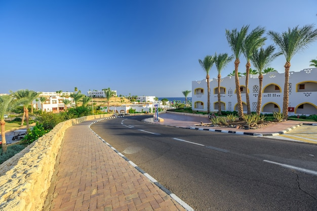 La vista sulla strada e sulle palme vicino agli hotel