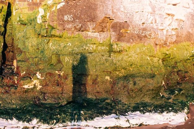 La vista della costa rocciosa è diventata verde dall'ombra di un uomo di alghe in fiore in primo piano