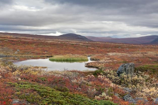 Vista al parco nazionale di sarek in autunno, svezia, fuoco selettivo