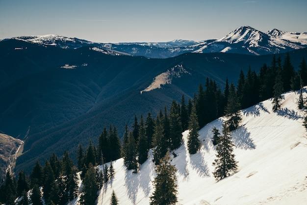 Una vista di una montagna innevata
