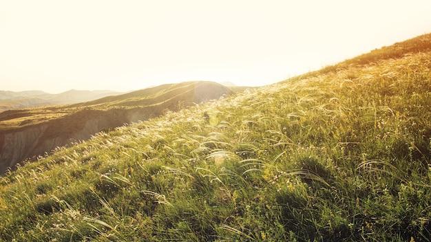 Vista sulla soleggiata montagna erbosa