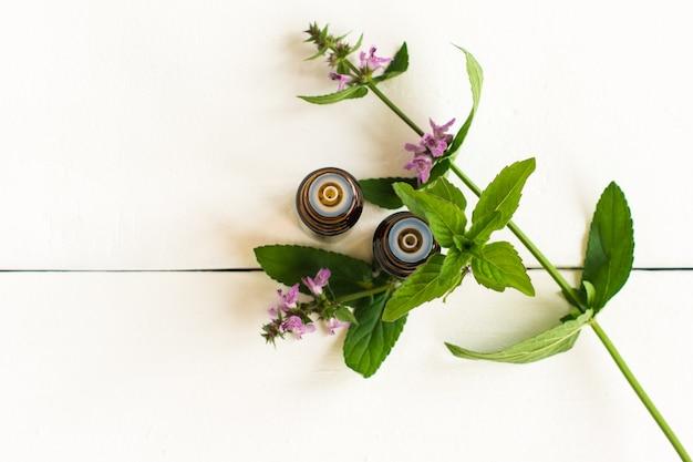Vista sulla menta verde fresca e bottiglie di vetro di olio essenziale di menta su sfondo bianco. concetto di piante aromatiche medicinali a base di erbe naturali.
