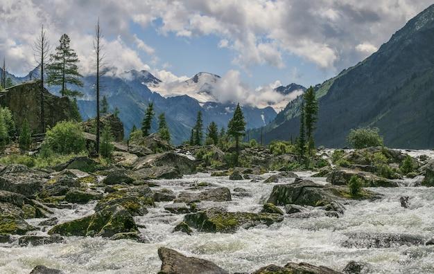 Vista di una gola di montagna selvaggia, un fiume turbolento scorre tra le pietre