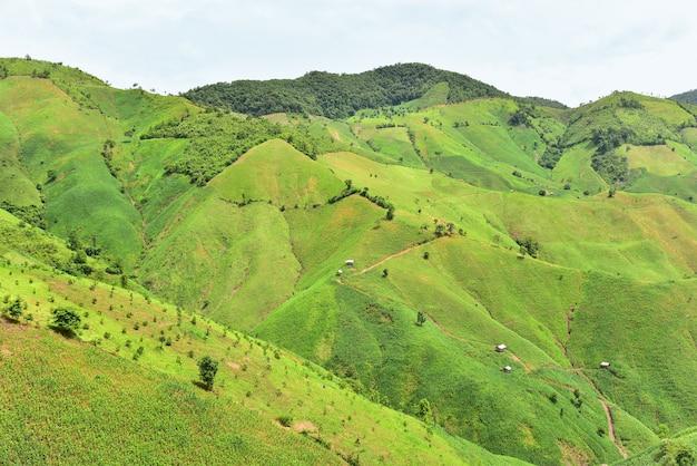 Viste delle montagne nel distretto di chaloem phra kiat, nan, tailandia.